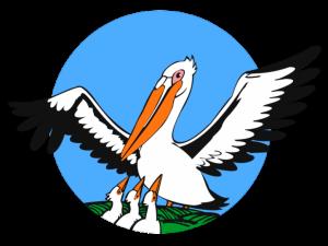 логотип конкурса пеликан